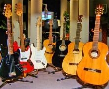 Gitar Cesitleri Nelerdir?